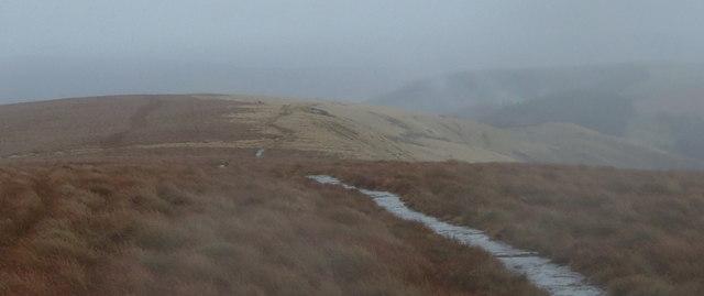 Path descending the moorland