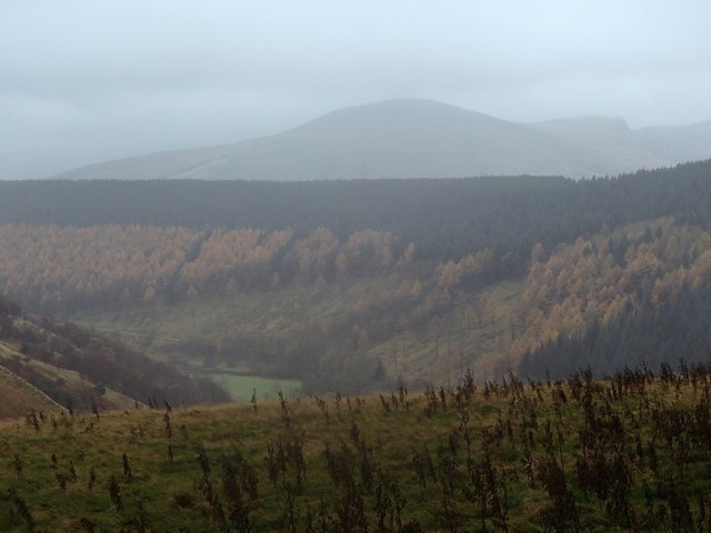 Across the Woodlands Valley