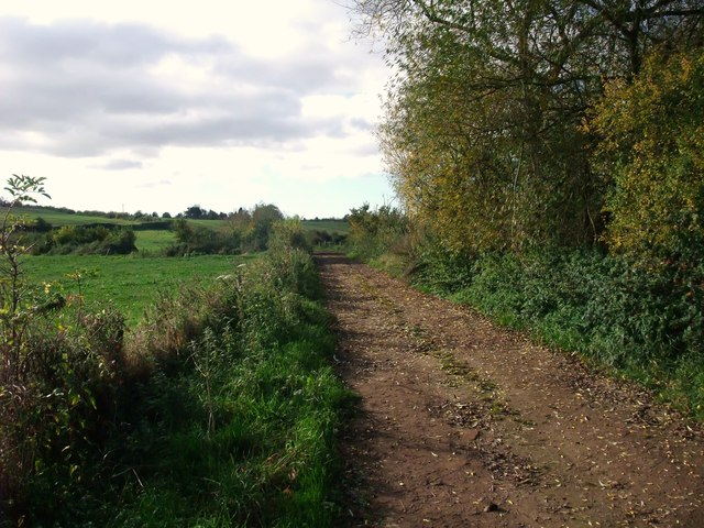 Proposed western extension of the Trent Valley Way nearing Repton