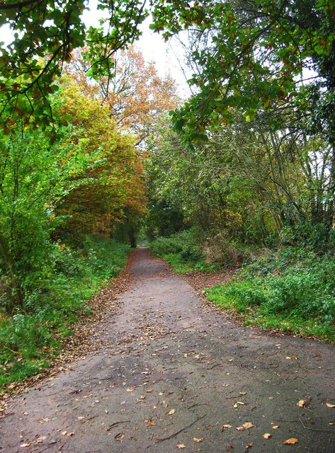 Public bridleway in Burlish Top Nature Reserve leading to car park and Kingsway, Stourport-on-Severn