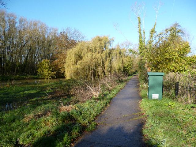 Footpath near the university institute 3 - 3 part 4