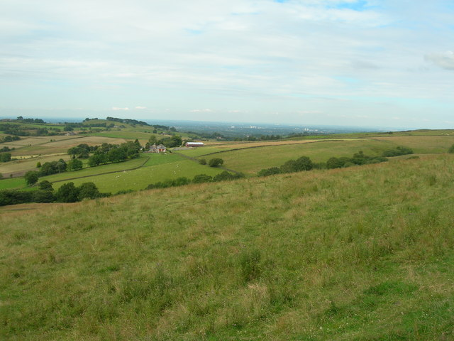 Hillside southeast of Ayton Farm