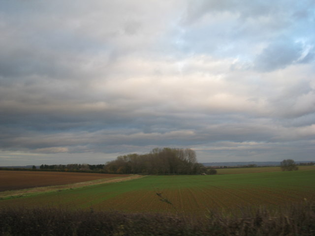 View towards a plantation near Waddingham Grange
