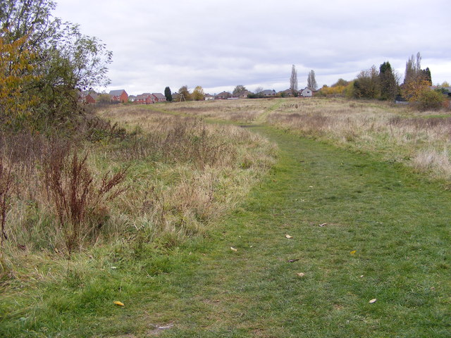 Hilton Path