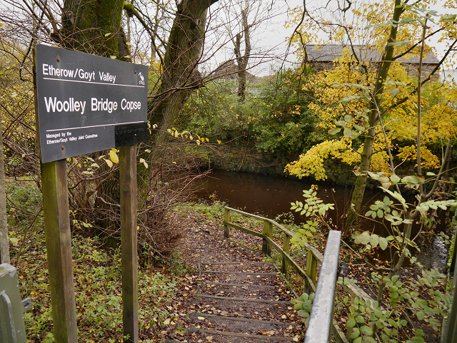 Steps to Woolley Bridge Copse