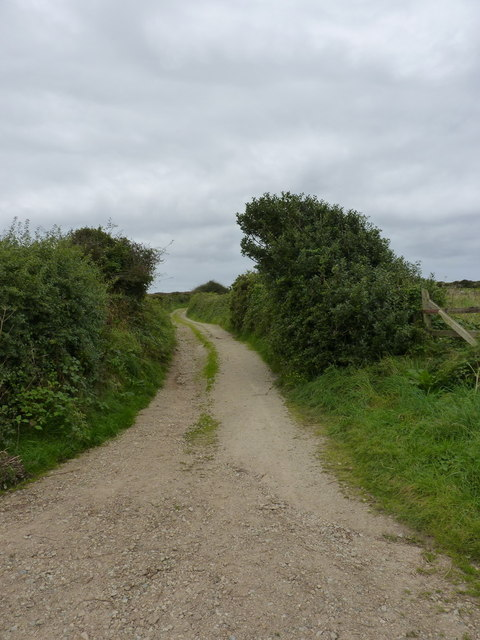 Windswept trees hedging the footpath up St Agnes Beacon