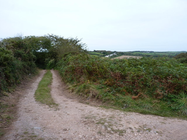 Track towards Manor Parsley Farm