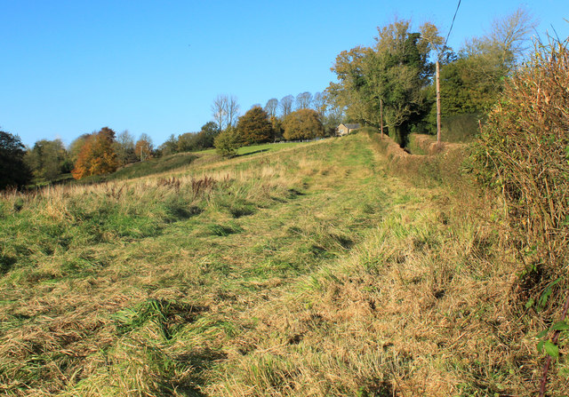 2012 : Rough grazing west of Batcombe