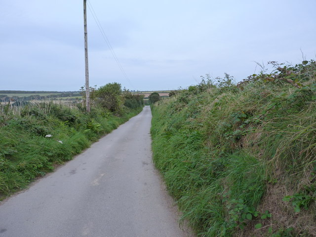 Track through fields north of Penhallow Farm