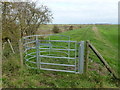 TL2898 : The Nene Way at Bassenhally Farm near Whittlesey by Richard Humphrey