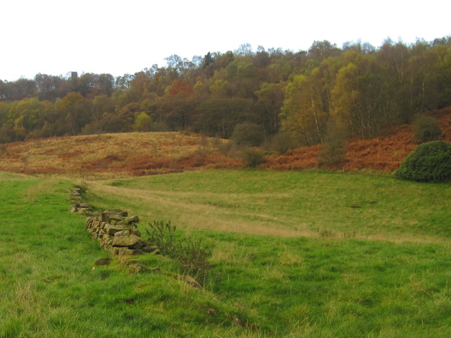 Autumnal woodland near Stanton Woodhouses