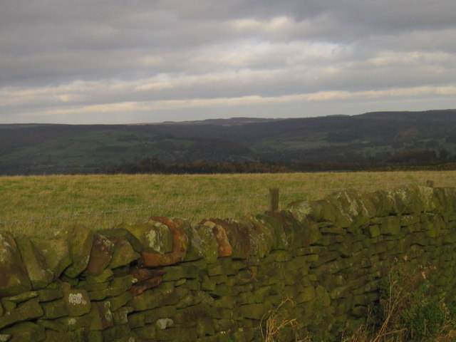 View from the road near Ballcross Farm