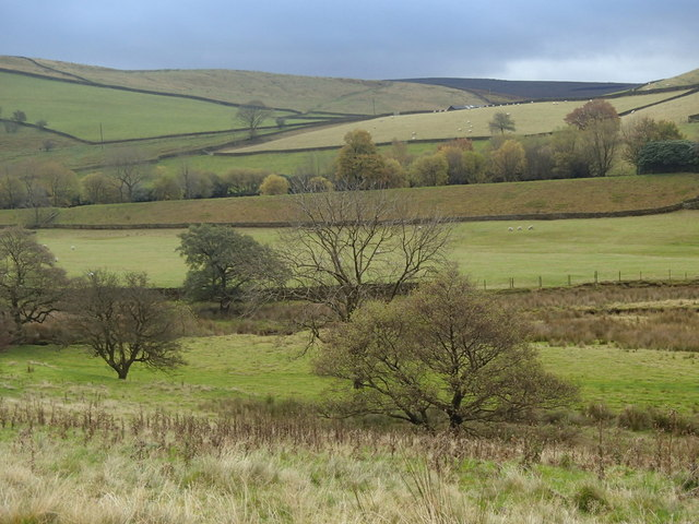 Hillside near Mossy Lea Farm