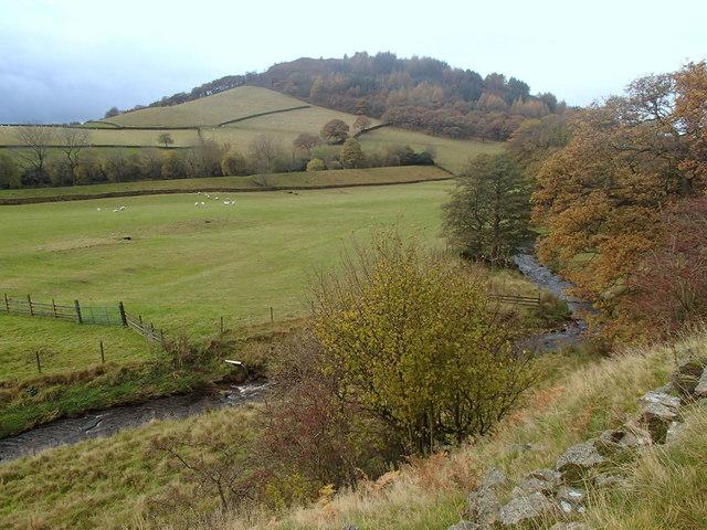 Shelf Brook and Shire Hill