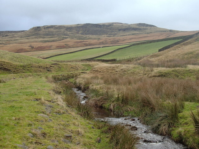 Valley of Yellowslacks Brook