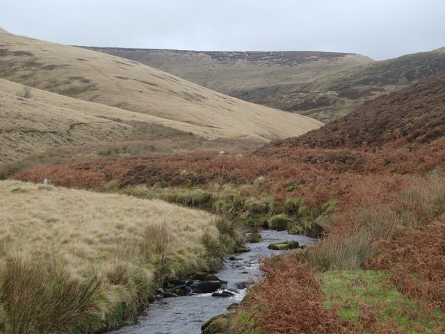 Towards the headwaters of Shelf Brook