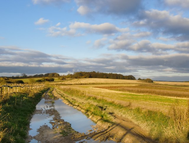 Muddy bridleway near Findon Park Farm