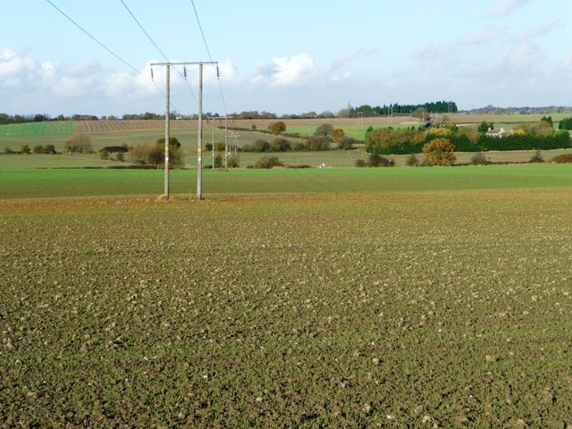 Power lines crossing farmland west of Kinsley