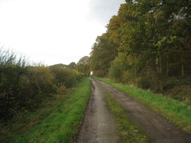 Track alongside Kew Holt