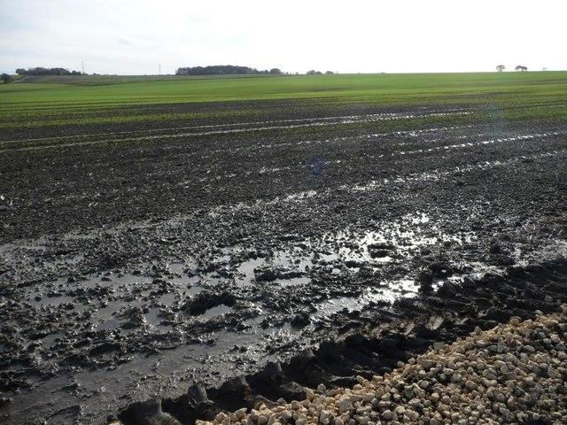 Waterlogged farmland, south-west of Kinsley