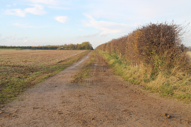 Farm track off B1178, Potterhanworth Heath