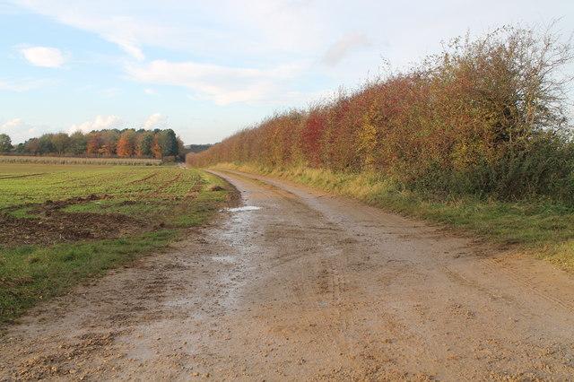 Farm track off the B1178