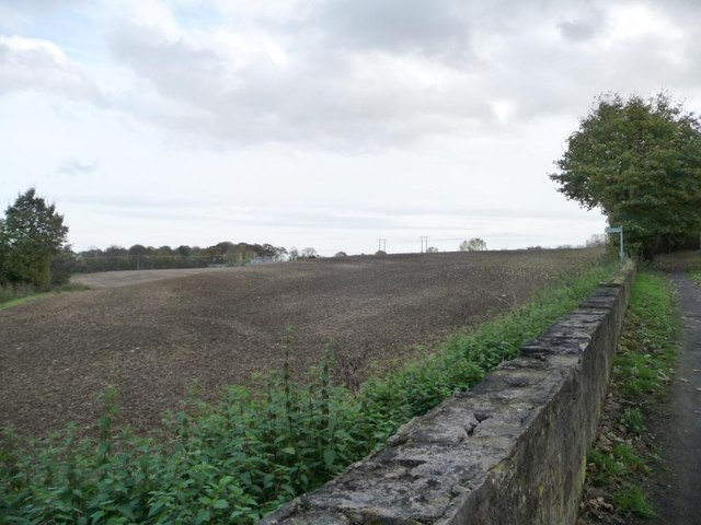 Farmland on the south bank of Hague Hall Beck