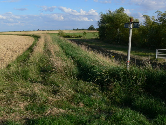 Flat farmland near Gedney Drove End