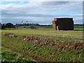 TL2399 : Straw stack at Halfpenny Toll House Farm by Richard Humphrey