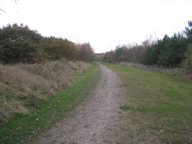 Marsh Lane, Arksey