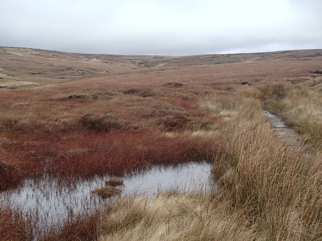 Moorland and pool by the Pennine Way