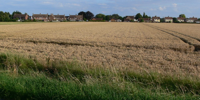 Farmland at Gedney Drove End