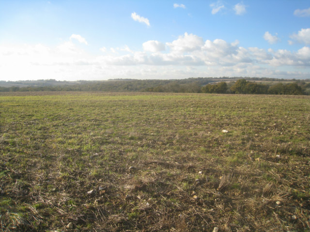 Farmland south of Ibworth