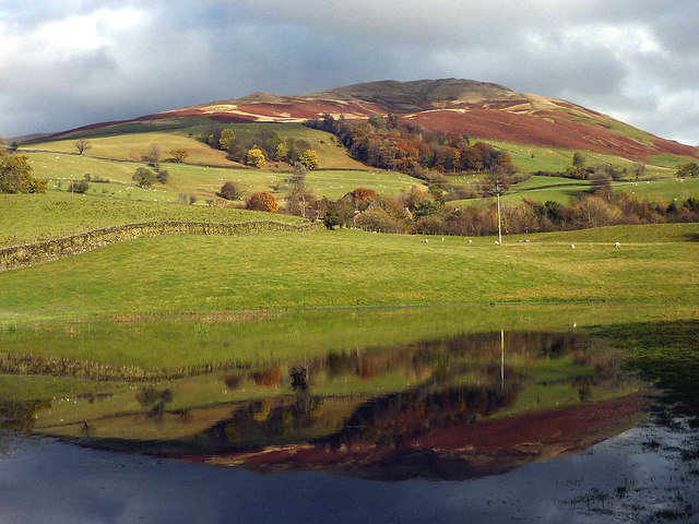 Winder reflected in a flooded field
