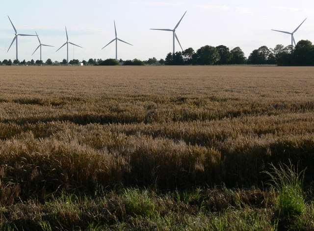 Gedney Marsh Wind Farm