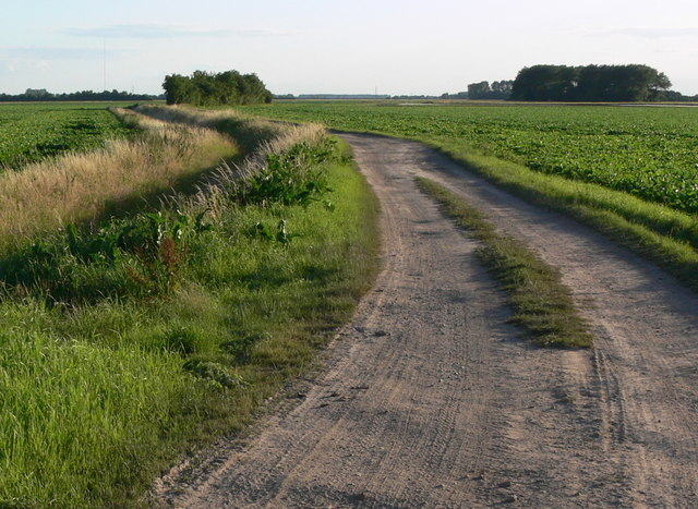 Track across the farmland