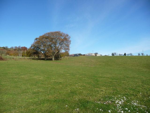 Approaching Cwrt Henllys farm