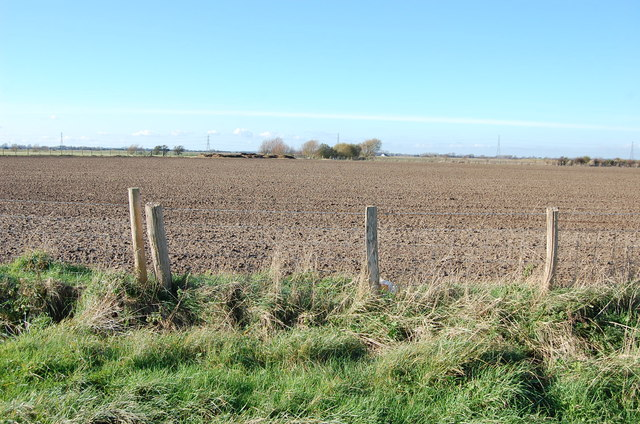 Fields off Caldecot Lane