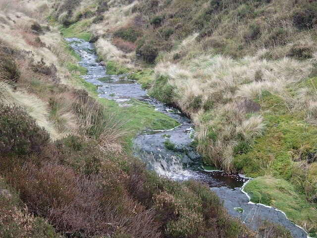 Moorland stream, Wildboar Grain