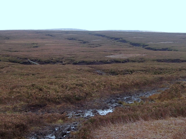 An expanse of moorland