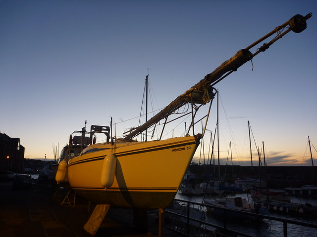 Coastal East Lothian : A Narwhal At North Berwick Harbour