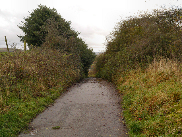 Dukinfield, Yew Tree Lane (Track)