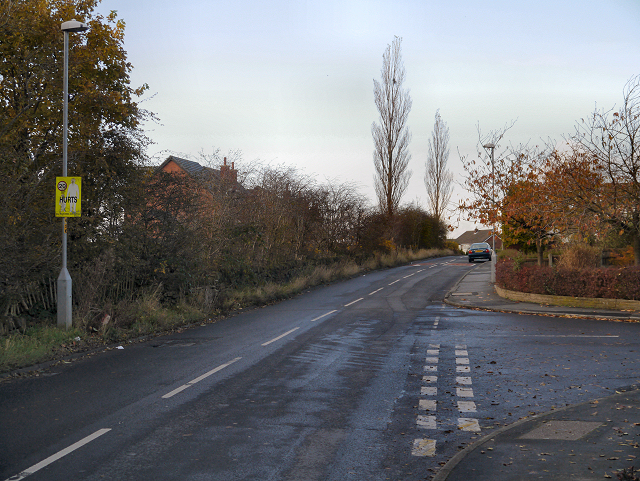 Yew Tree Lane