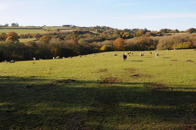 Farmland to the south-west of Bryngwyn