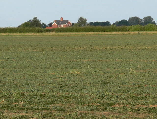 Isolated cottages near Holbeach St Matthew