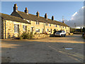 SJ9897 : Cottages at Mottram Rise by David Dixon