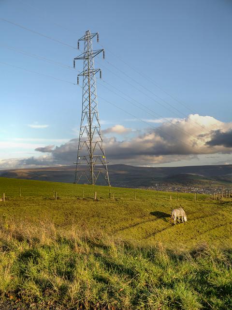 Pylon, Hobson Moor