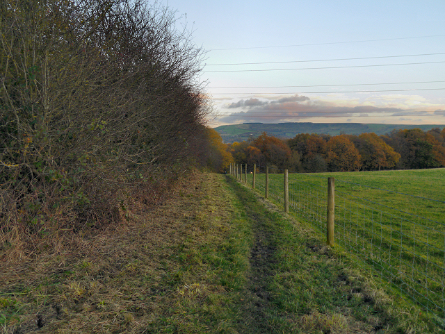 Footpath towards Great Wood