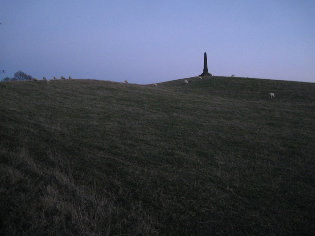 Obelisk and sheep on Hoo Hill, dusk