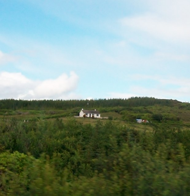 Cottage surrounded by forestry plantations
